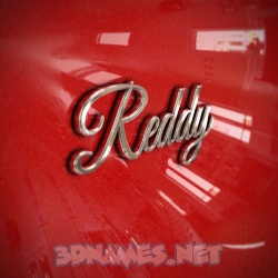 13 3D images for Reddy