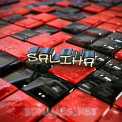 saliha name 3d