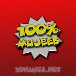 mujeeb name 3d
