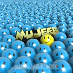 mujeeb name